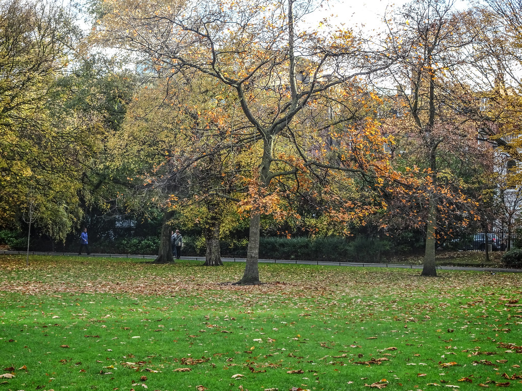 ST. STEPHEN'S GREEN IN AUTUMN 011