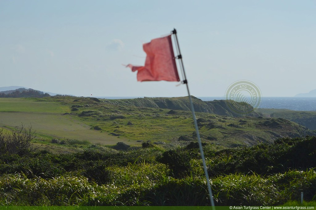 land for golf at Ukushima windblown flag