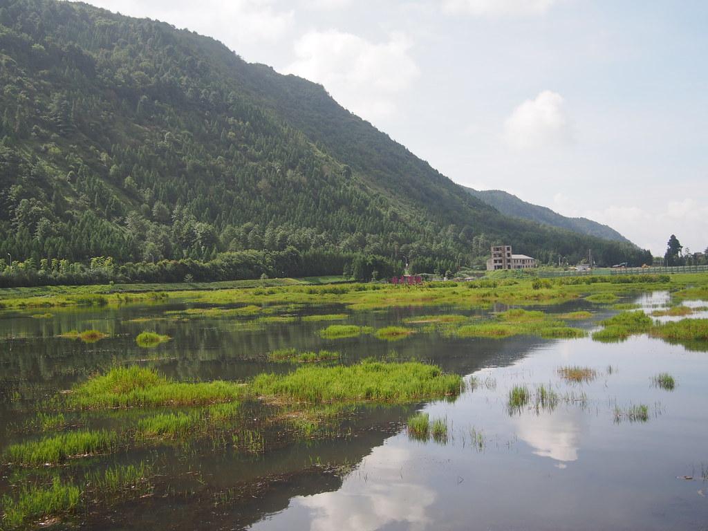 北海濕地一景。攝影:陳宣竹