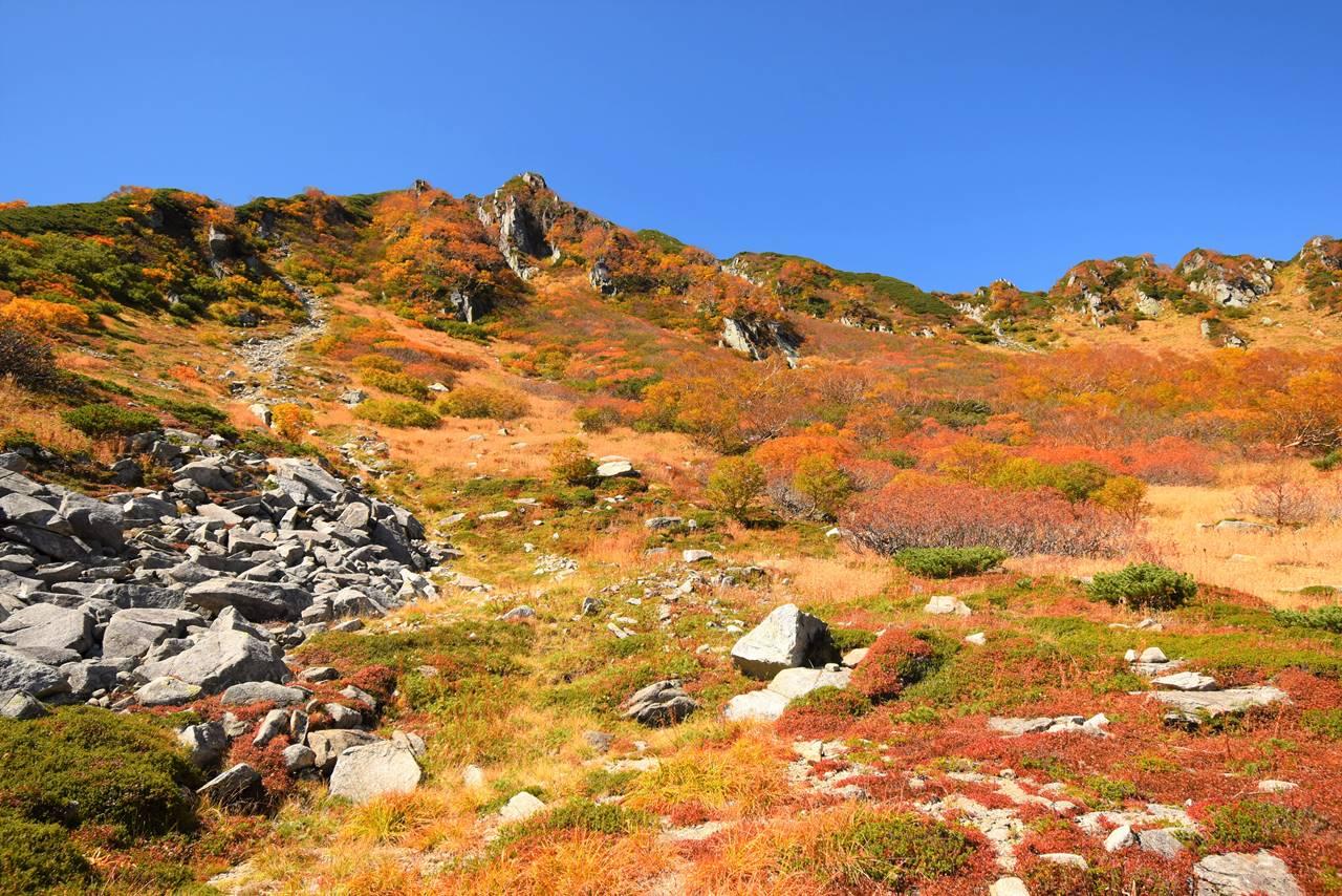 木曽駒ヶ岳の紅葉