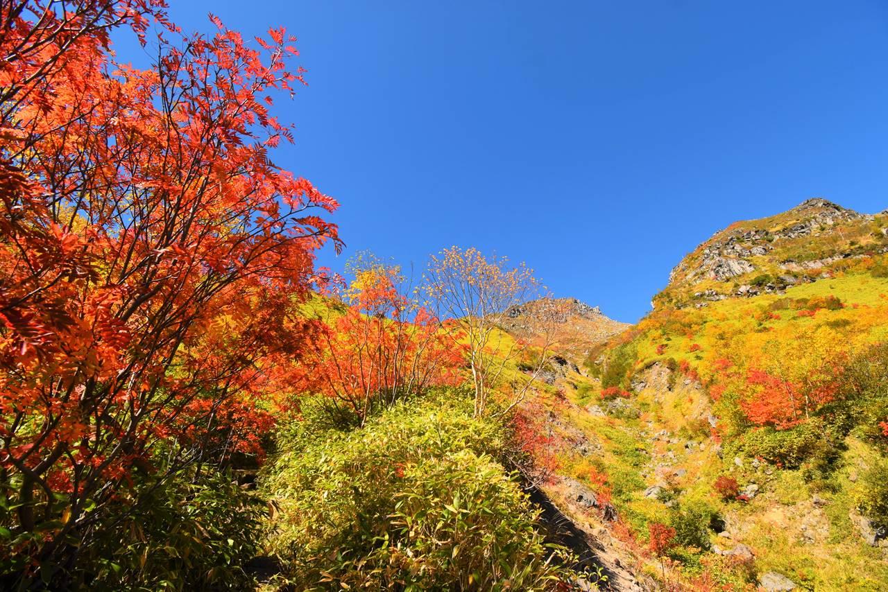 北アルプスの紅葉登山