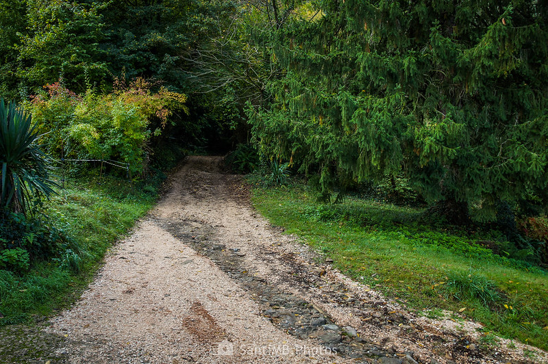 Camino a Sant Miquel del Corb