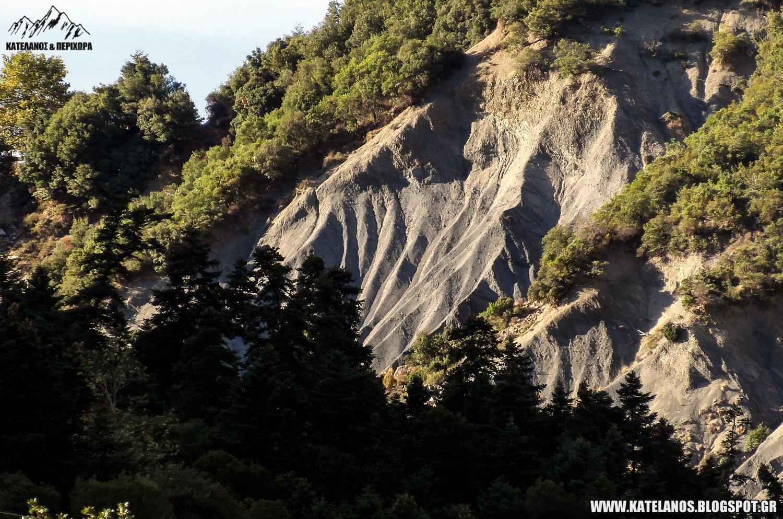 έλατα βουνό σκιές χαράδρες ορεινή τριχωνίδα ελατόδασος σκαλτίνας