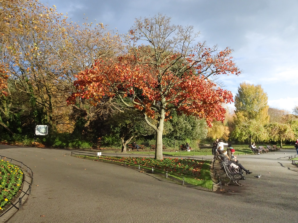 ST. STEPHEN'S GREEN IN AUTUMN 017