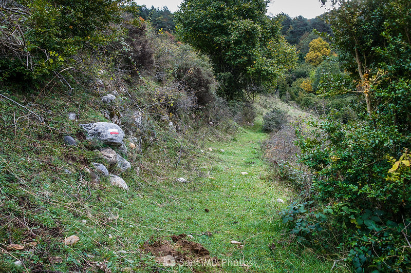 GR-241 hacia Rasos de Clarent