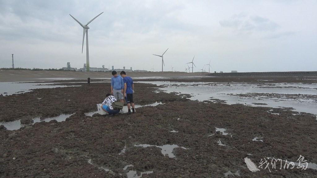975-1-06東海大學團隊進行固定樣點調查,想推估裸胸鯙數量,藉此理解藻礁生態系的豐富度。