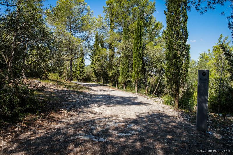 Volviendo del Pla dels Albats al Conjunto Monumental de Olèrdola