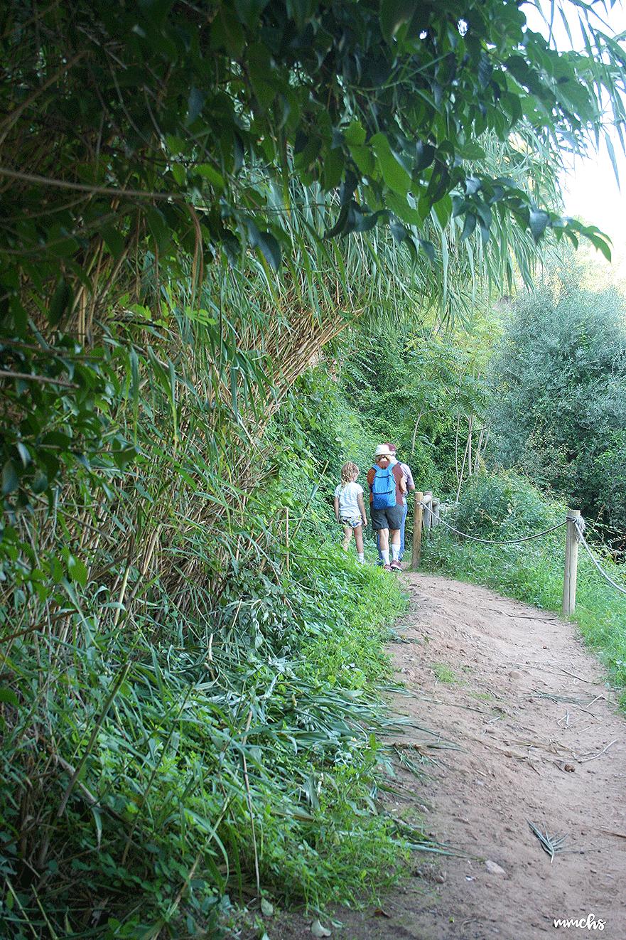 senda botánica de Calduch Villarreal