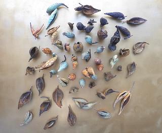 135 Milkweed Pods by Yoshitomo Saito