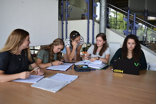 Five students studying around a table