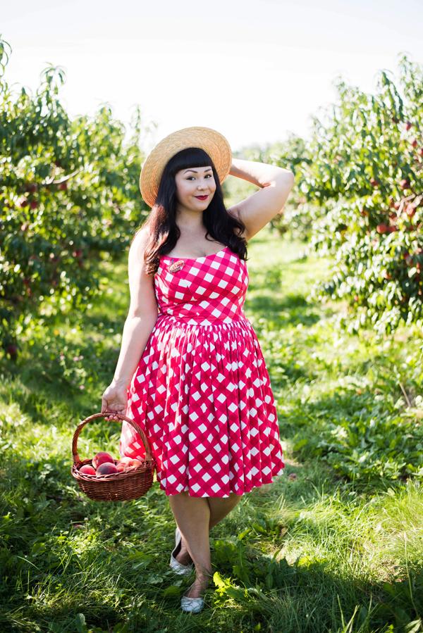 pinup girl clothing picnic jenny dress