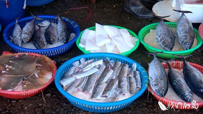 973-1- (10)-1 台灣沿近海魚類多達一百多種,近年來漁業資源銳減,但大多數漁獲卻沒有被好好利用。