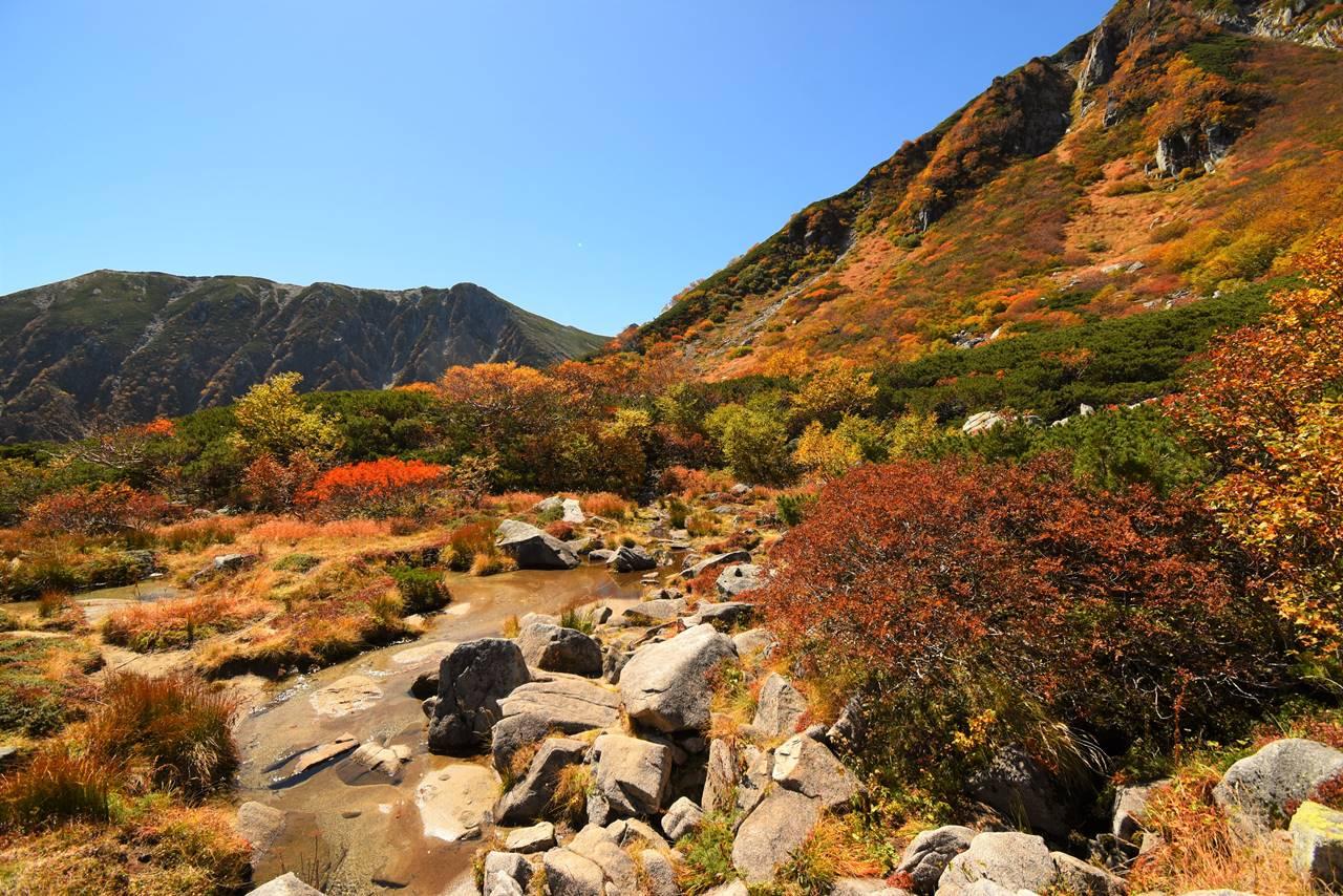 濃ヶ池周辺の紅葉風景