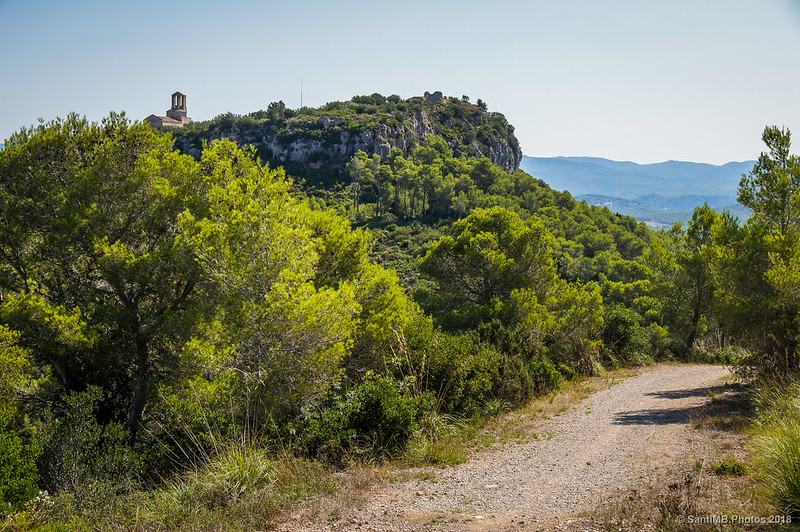 Llegando al Turó de Sant Miquel d'Olèrdola