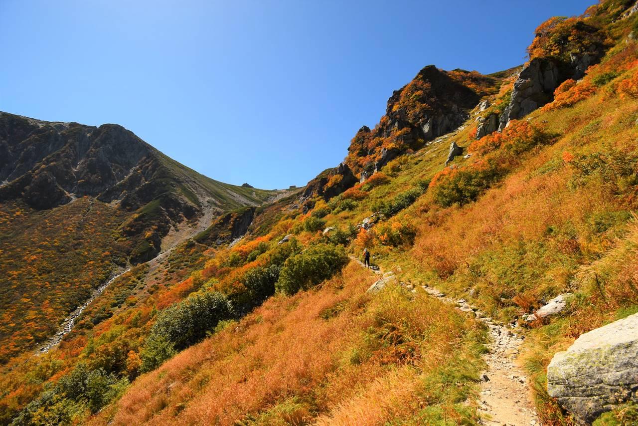 濃ヶ池から駒飼ノ池 紅葉の登山道