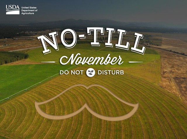 No-Till November Do Not Disturb graphic