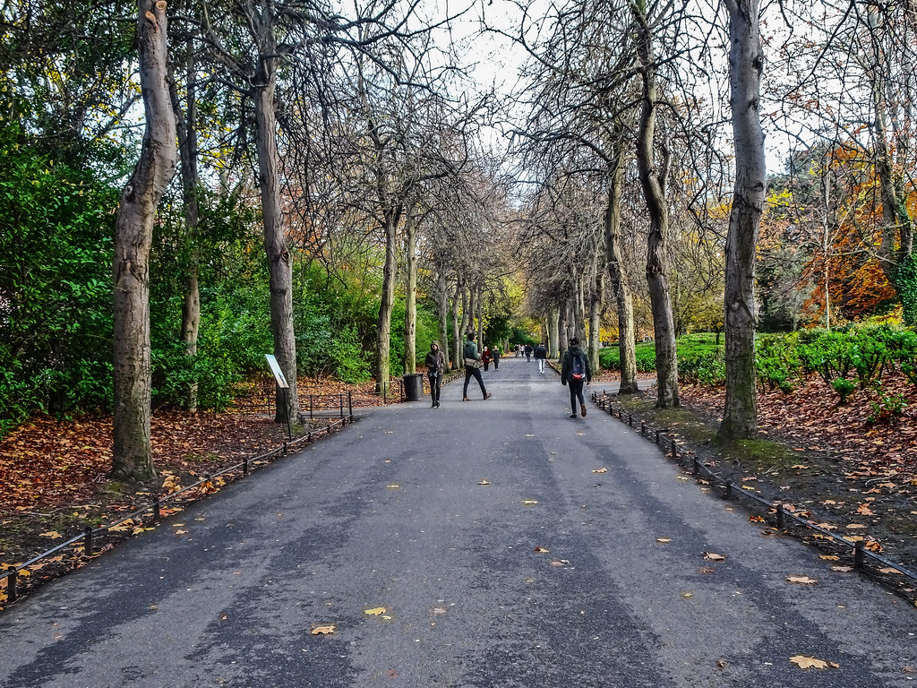 ST. STEPHEN'S GREEN IN AUTUMN 023