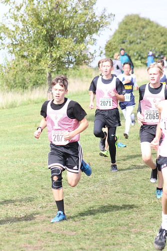Zach Russo, Ben Whaley, and Dillan Black Run for Yorkville at the IESA State Cross Country Championships