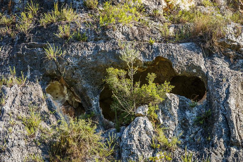 Cuevas en el Fondo de la Seguera