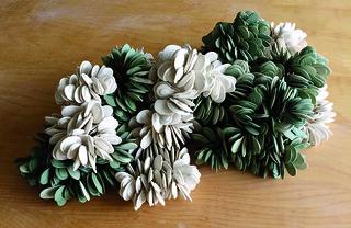 Flora by Liz Quan