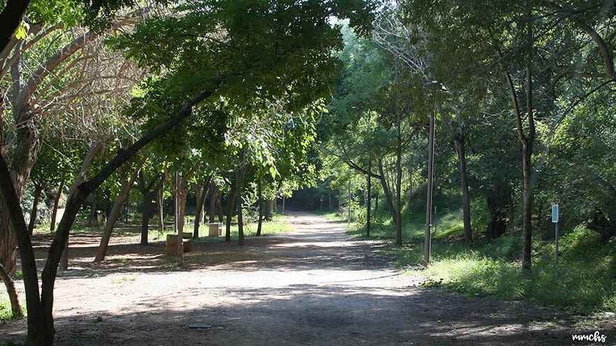 senda botánica de Calcuch Villarreal
