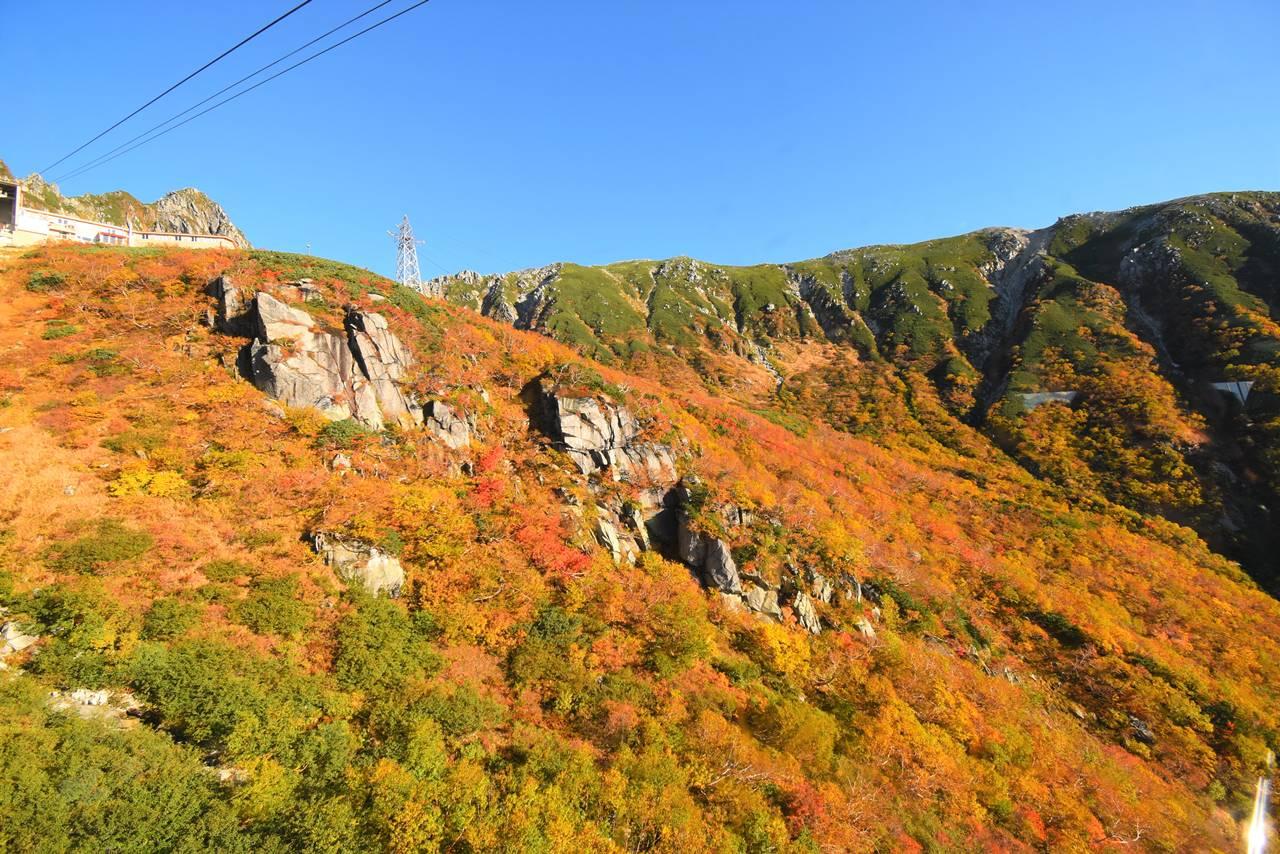 ロープウェイから眺める紅葉風景