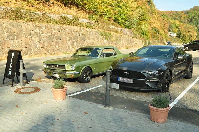 Oktober 2018: Ford Mustangs im Schriesheimer Tal - Ford Mustang 2018 - Oldtimer Ford Mustang 1965 - Pony Car ... Foto: Brigitte Stolle