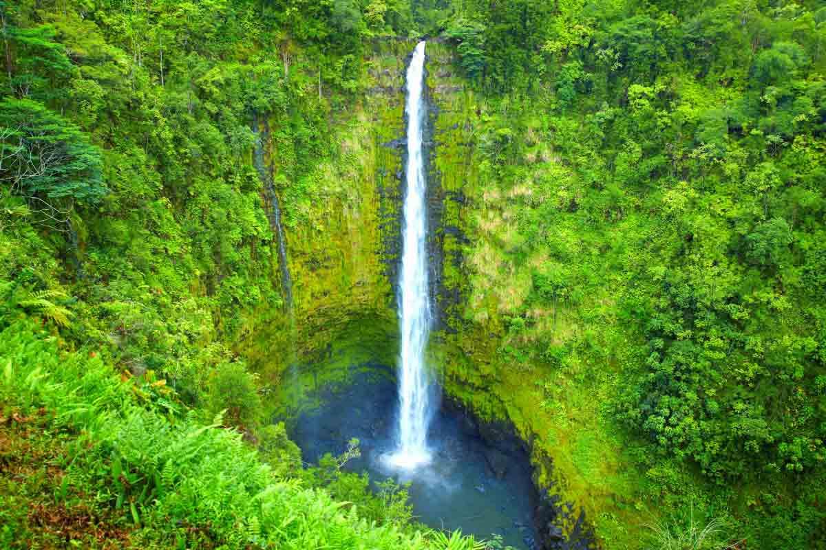 落差134mのハワイ島最大の迫力ある滝「アカカの滝」