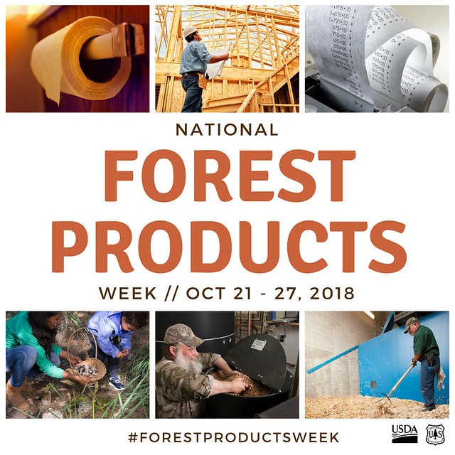 Forest Products Week infographic