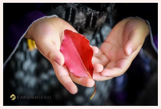 手のひらの中の紅葉した葉