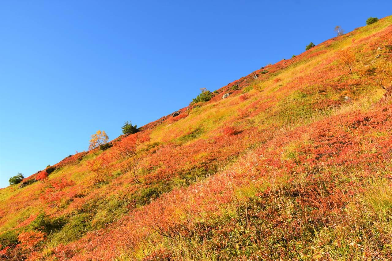 赤く染まる焼岳の山肌