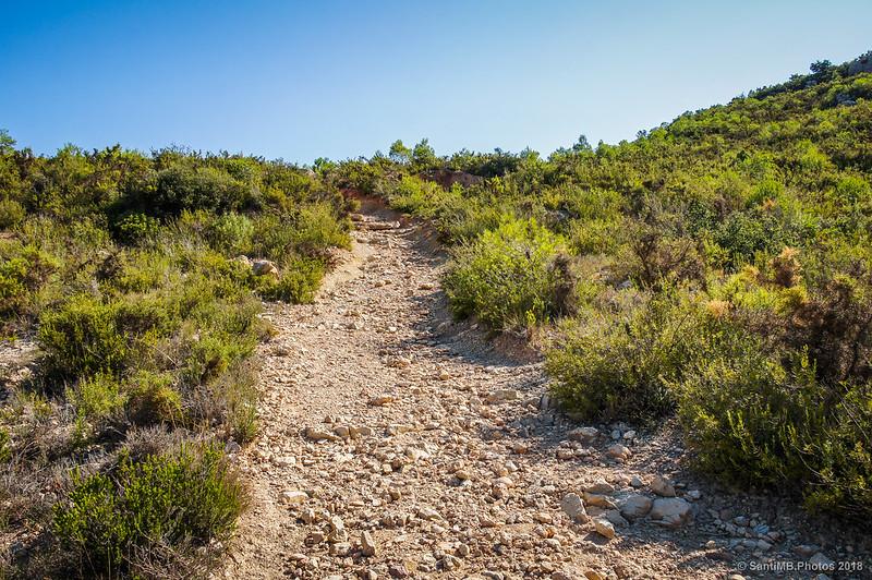 Camino del Fondo de la Vall al Castell d'Olèrdola