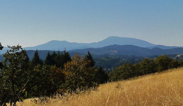 View of Marys Peak from Chip Ross Park