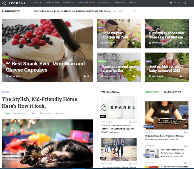 Best WordPress Themes for Websites and Blogs