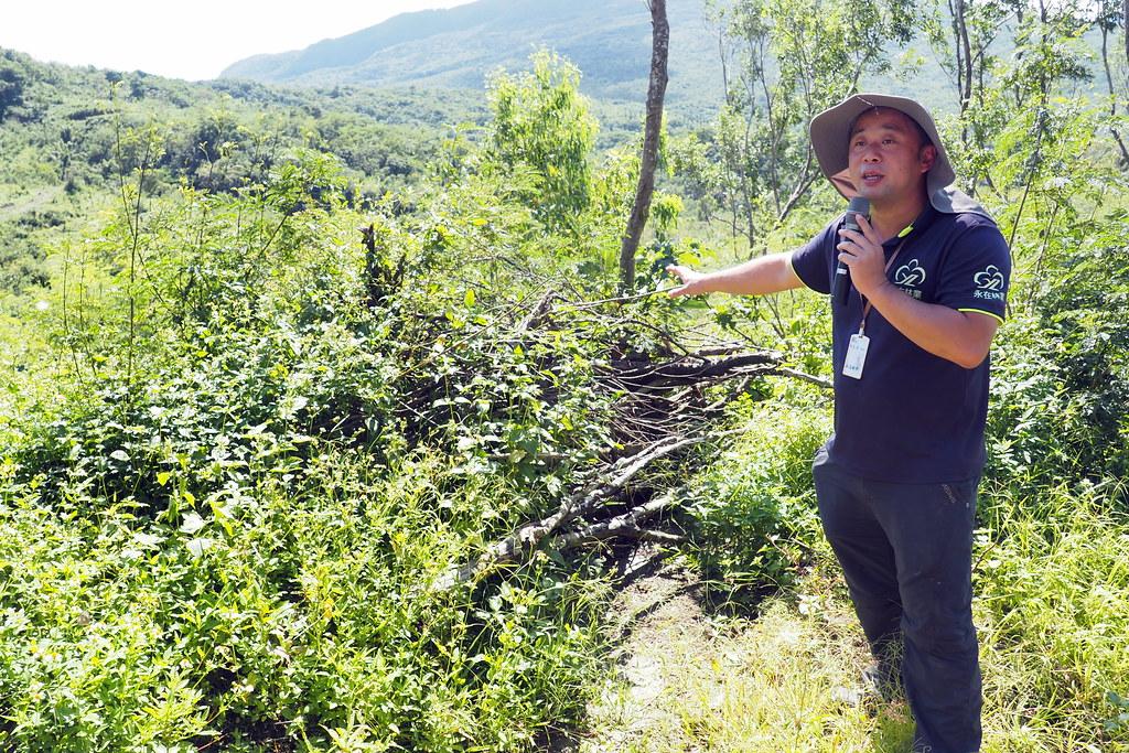 砍下的小徑木有多元利用,非廢棄物。攝影:李育琴