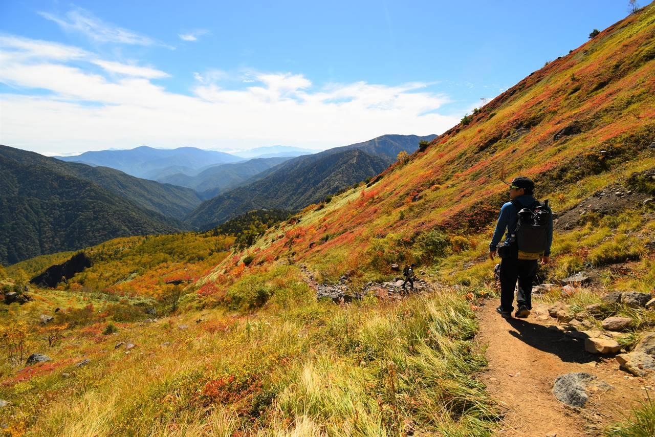 焼岳の紅葉風景