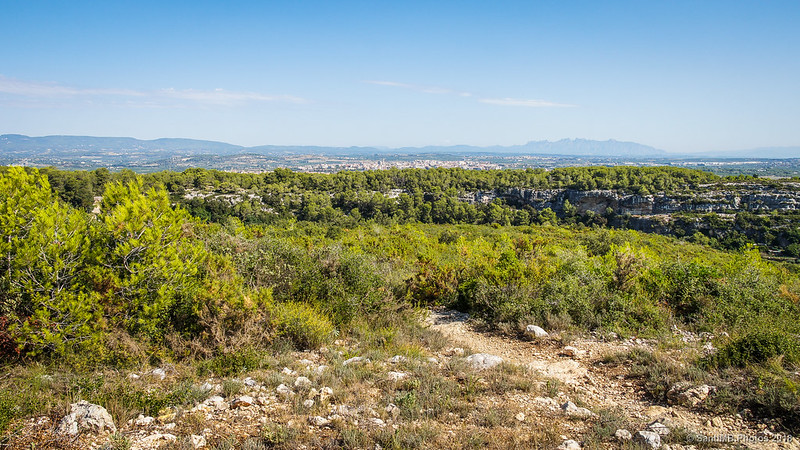 El llano del Alt Penedès desde la subida al castillo de Olèrdola