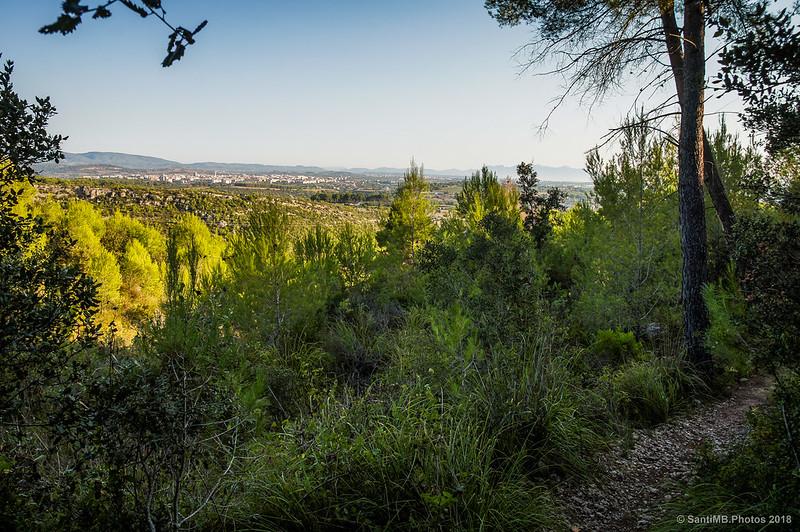 Una vista de Vilafranca del Penedès