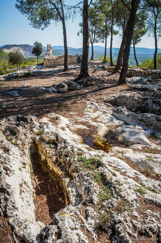Tumbas antropomorfas en el Pla dels Albats