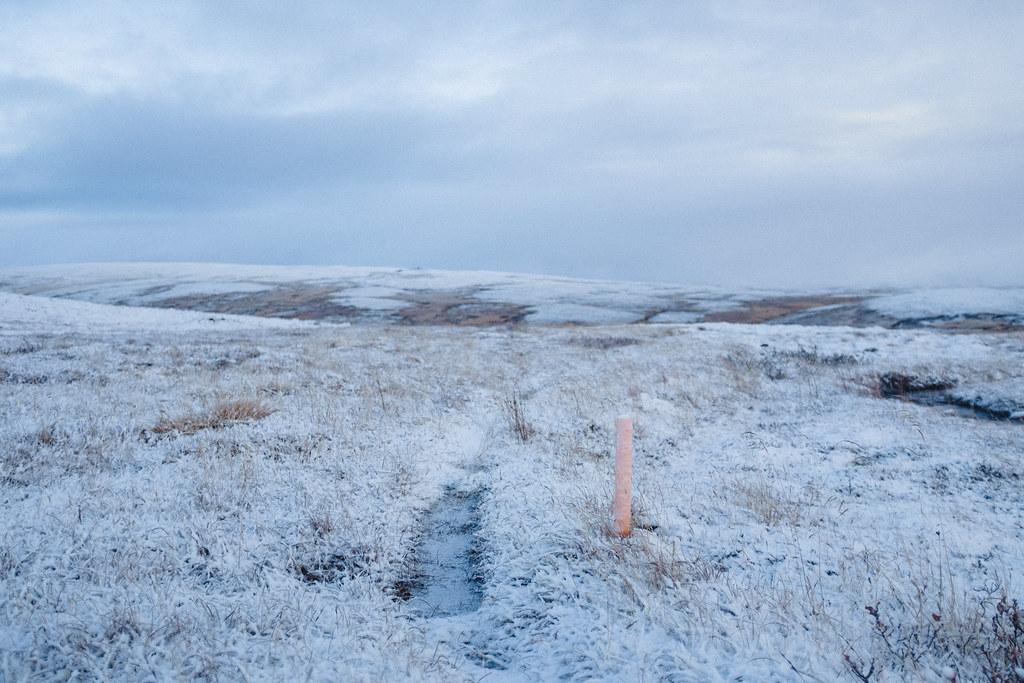 Trail, trailpost, thin layer of snow.