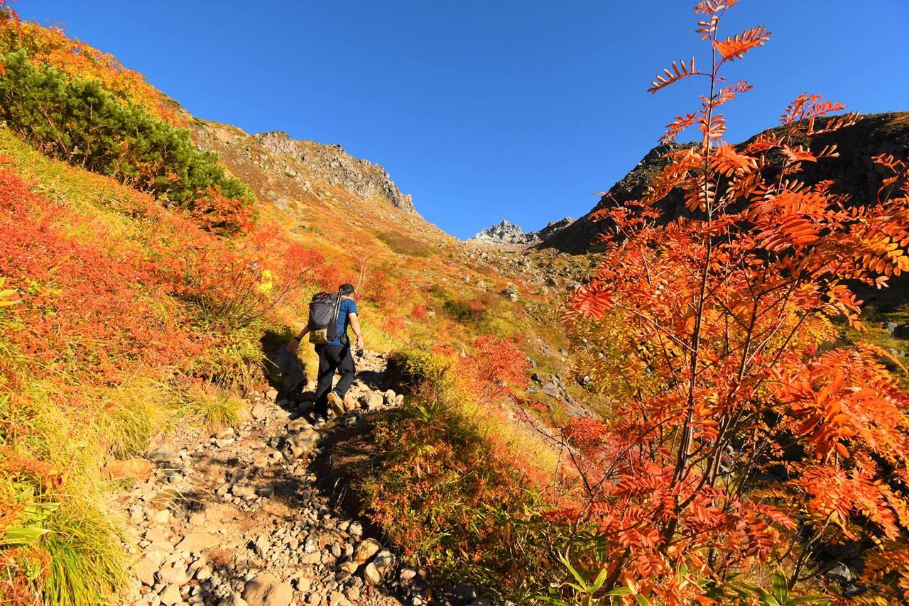 紅葉の焼岳登山