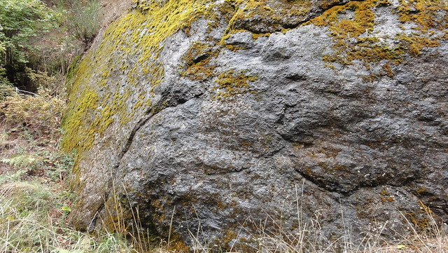 Hyaloclastite on Marys Peak