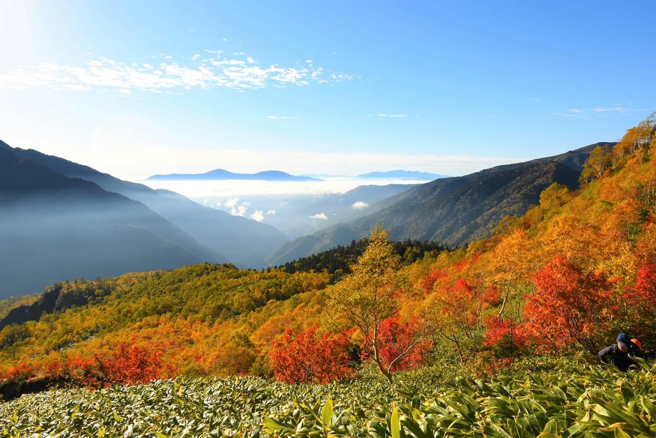 焼岳登山道から眺める紅葉と鉢盛山