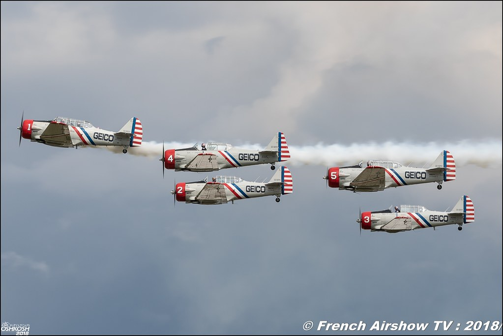 GEICO Skytypers Team Airshows T-6 Texan SNJ-2 Corporation EAA AirVenture Oshkosh 2018 Wisconsin Canon Sigma France contemporary lens Meeting Aerien 2018