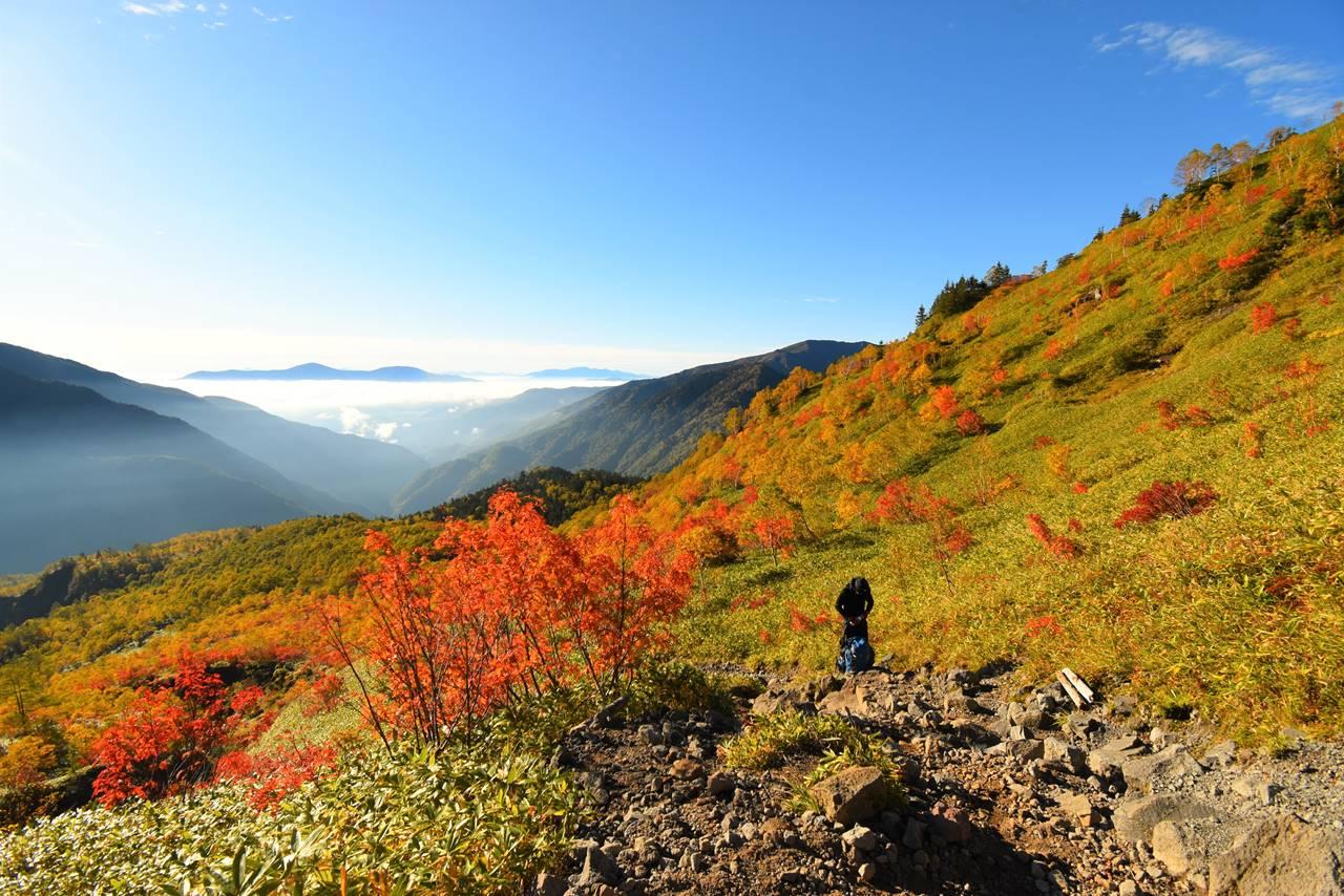 焼岳の紅葉風景と鉢盛山の展望
