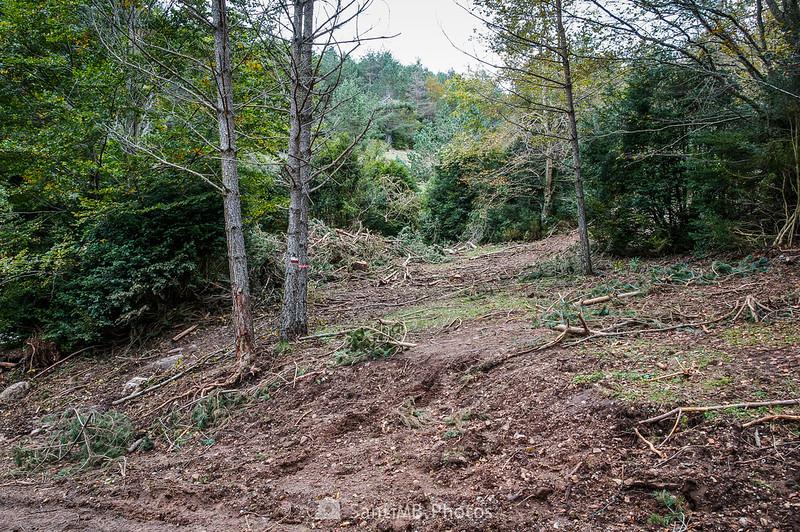 Retirando árboles caídos en la Baga de Clarent
