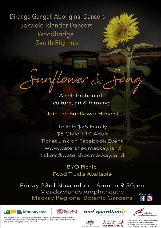 sunflower and song flyer