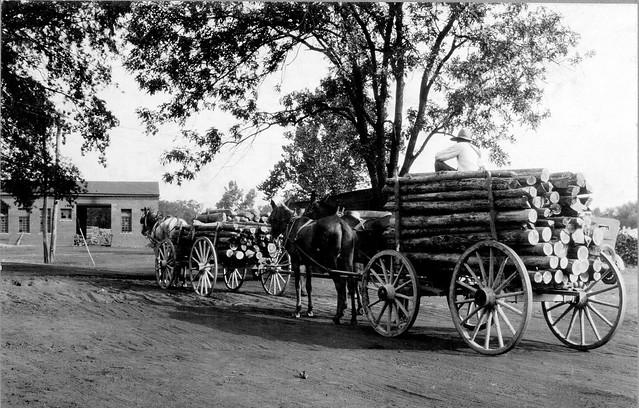 Pine pulpwood on the way to mill in Roanoke Rapids, North Carolina