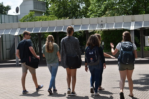A group of students walking on campus