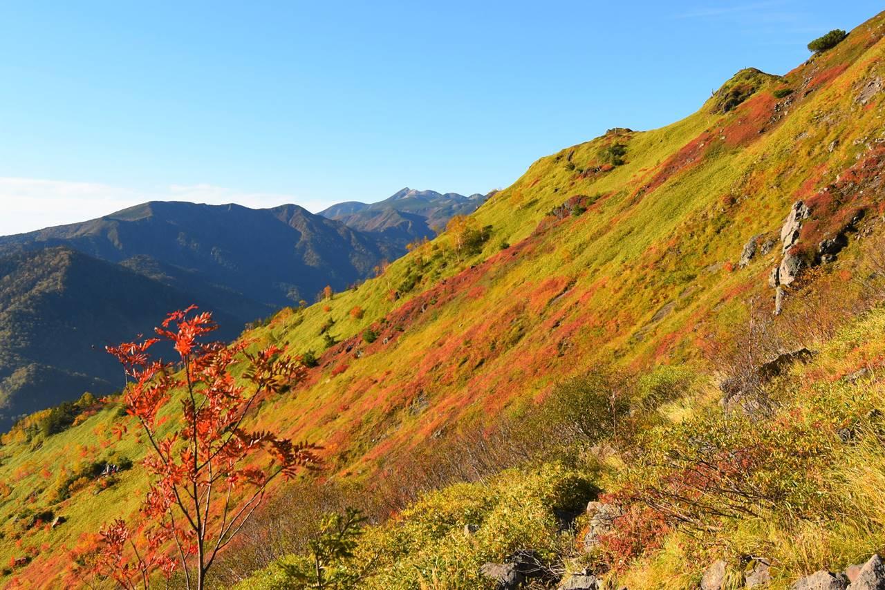 焼岳の紅葉と乗鞍岳